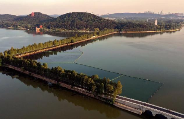 """2.6万平方米""""水下森林""""!武汉东湖又添一处新景观"""