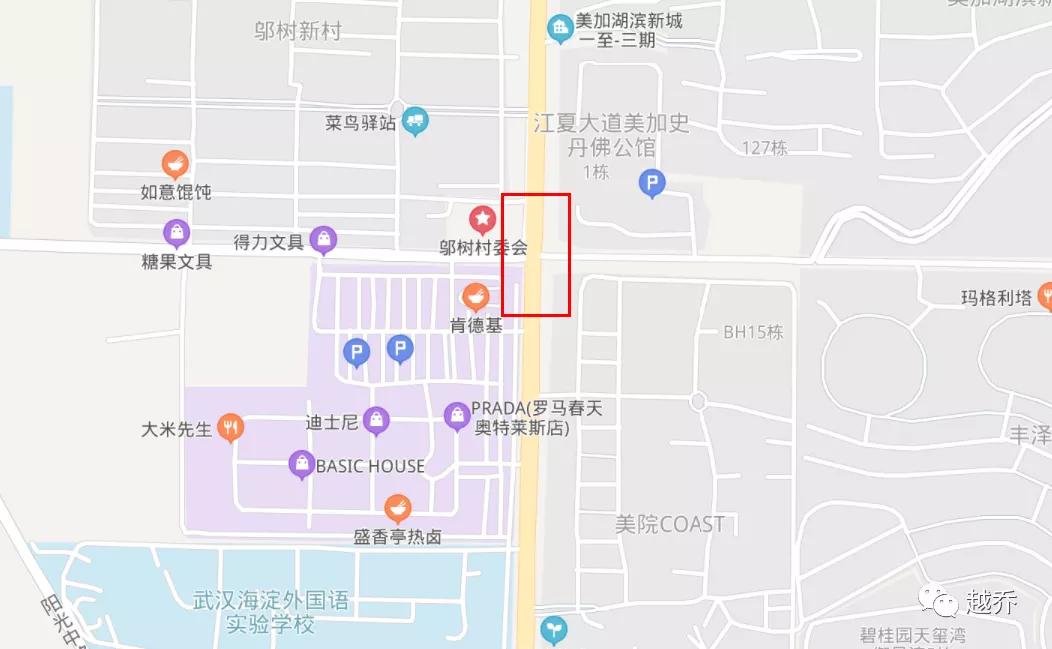 武汉地铁9号线亮相 站点具体落位曝光插图(25)
