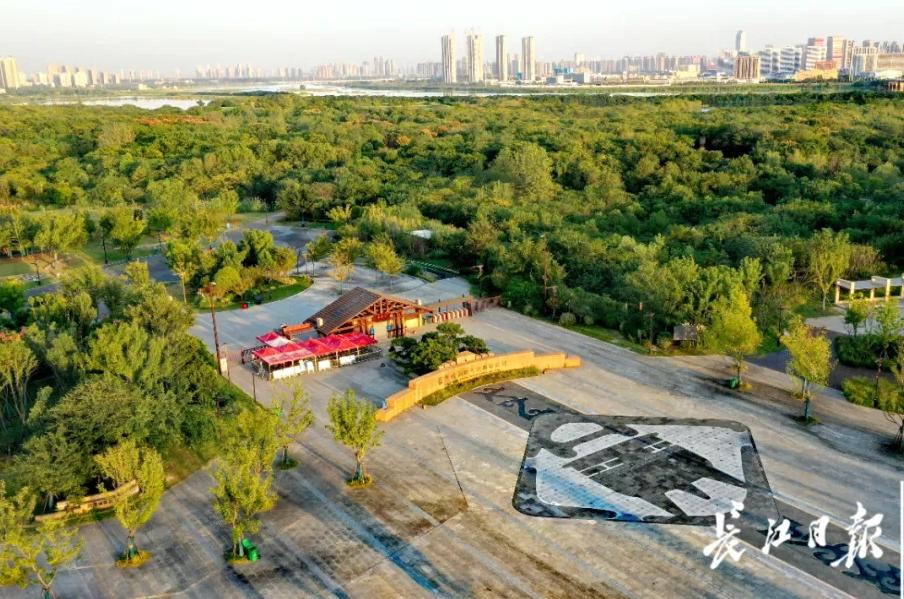武汉城市之根入围终评 8项湖北考古发现榜上有名插图