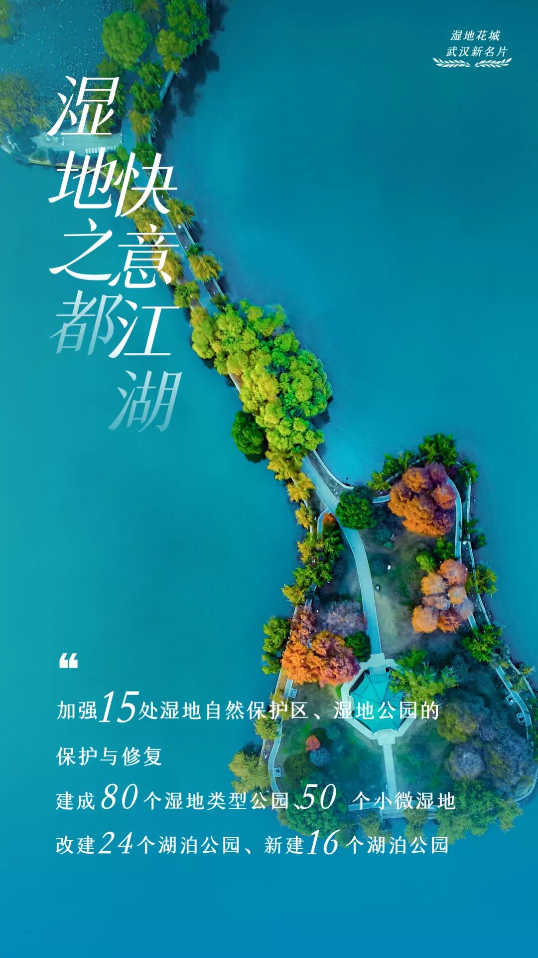 湿地花城将成为武汉新名片 让武汉市民轻松乐享花漾生活插图
